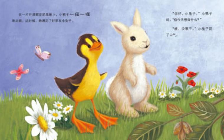 看小动物成长小兔子