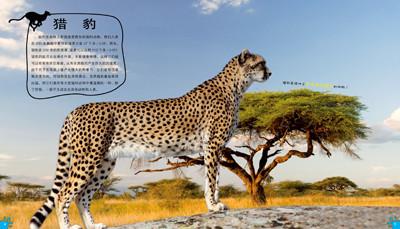 100种本领非凡的动物 动物中的运动健将