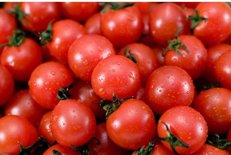 食全食美有机樱桃番茄270g/盒购买心得