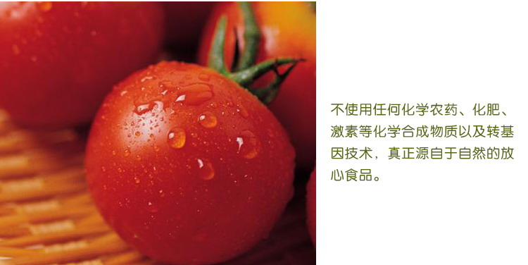 食全食美有机樱桃番茄270g/盒低价