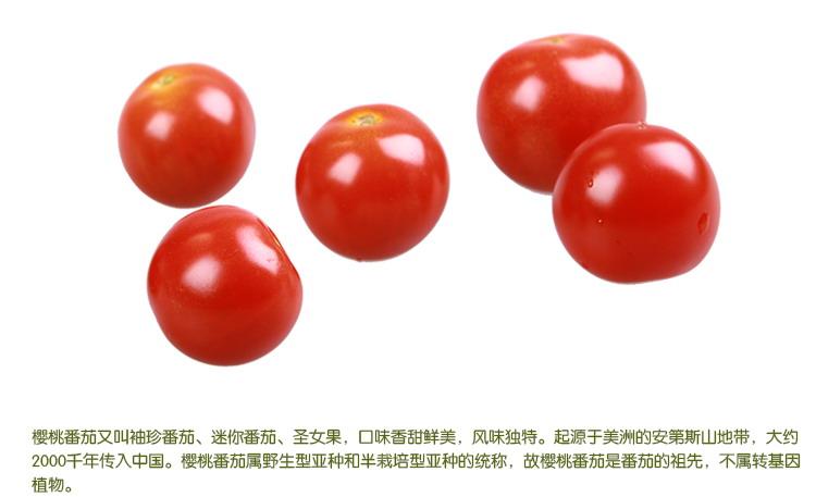 食全食美有机樱桃番茄270g/盒多少钱