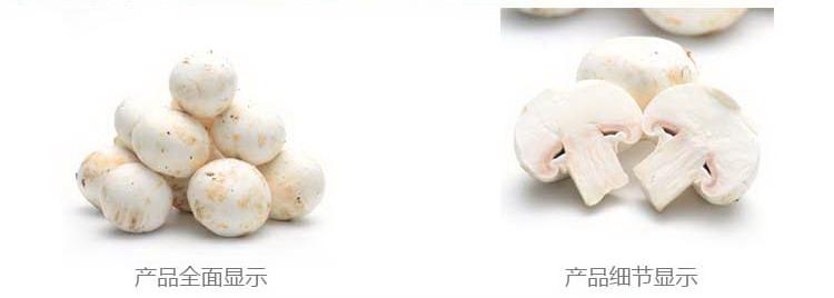 瑞鲜生菌菇官网