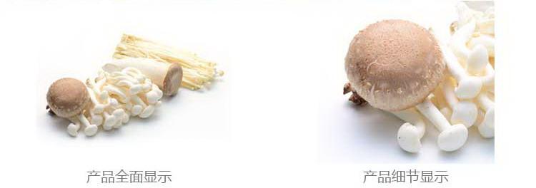 瑞鲜生菌菇怎么样