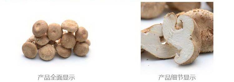 瑞鲜生菌菇优惠