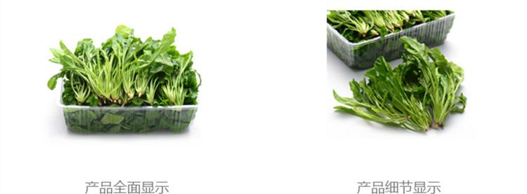 瑞鲜生菠菜300g/盒产地