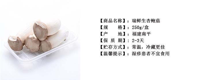瑞鲜生杏鲍菇250g/盒新品
