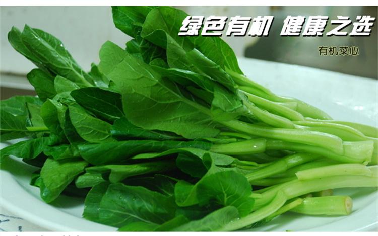 食全食美有机菜心270g/盒评价