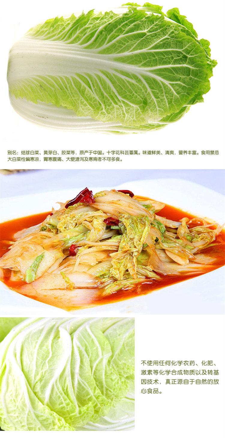 食全食美有机大白菜1000g/颗购买心得