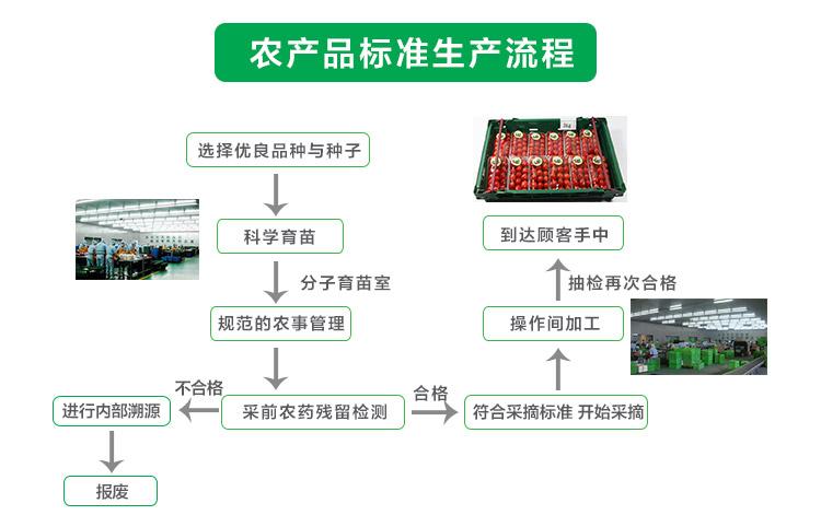 瑞鲜生绣珍菇250g/盒产地