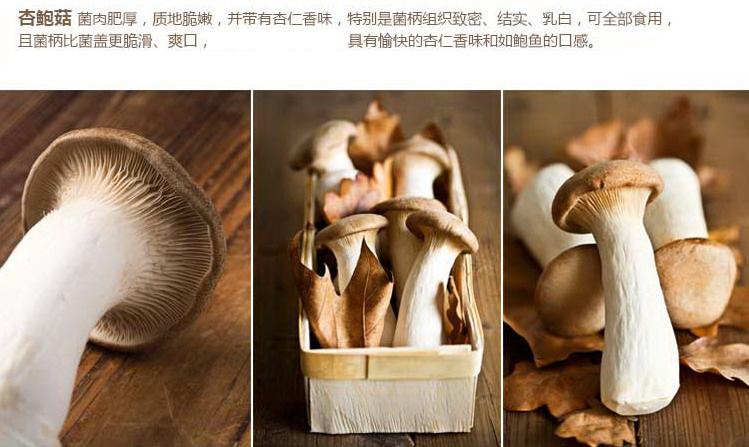 瑞鲜生杏鲍菇250g/盒热卖
