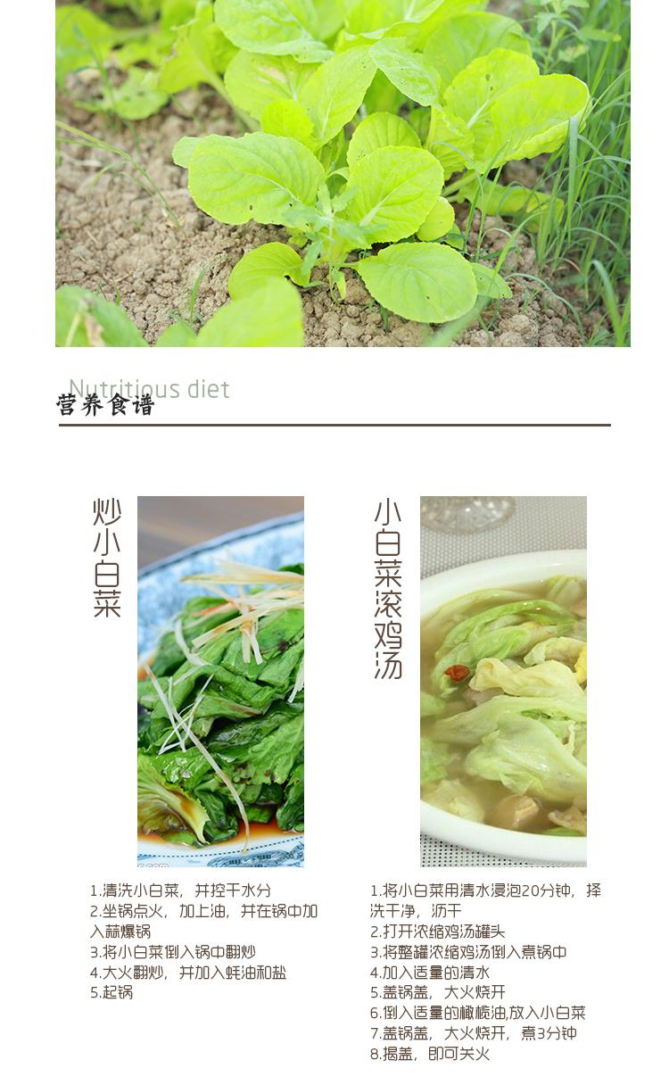 泰生有机小白菜250g/盒多少钱