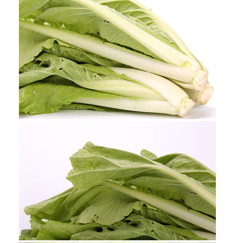 泰生有机小白菜250g/盒新品